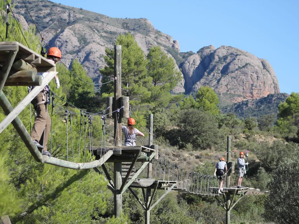 Arborismo Murillo de Gallego