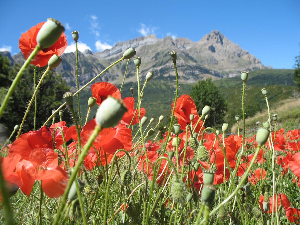 Senderismo Pirineo